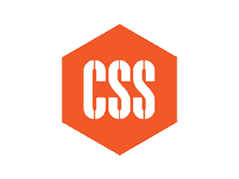 CSS FROM SWEDEN
